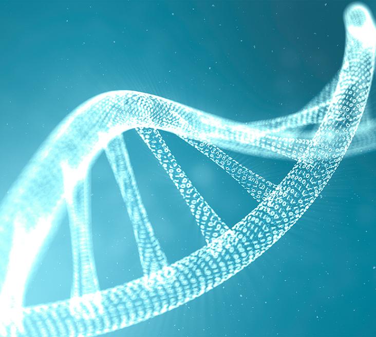 Produkte für die Molekularbiologie bei neoFroxx