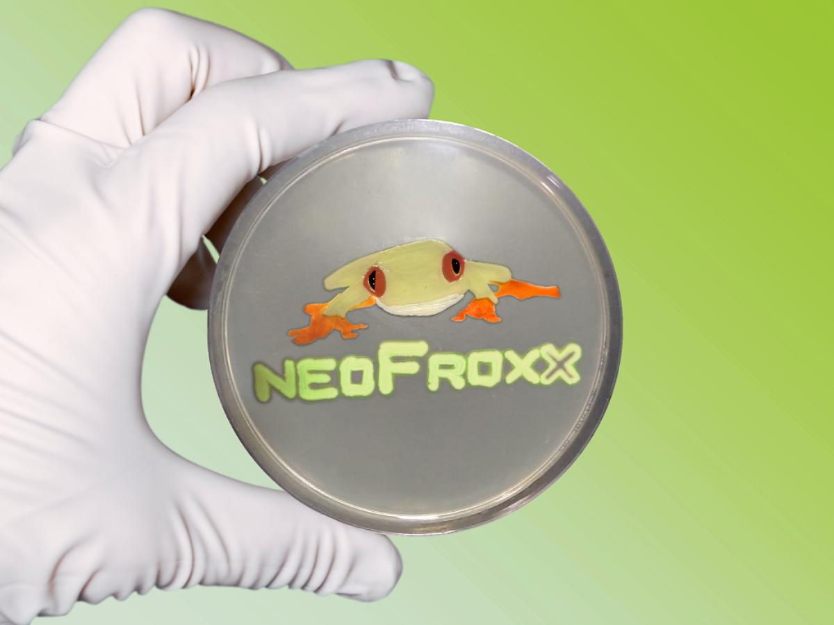 Lebendiges neoFroxx-Logo: Unser Agar Art Motiv