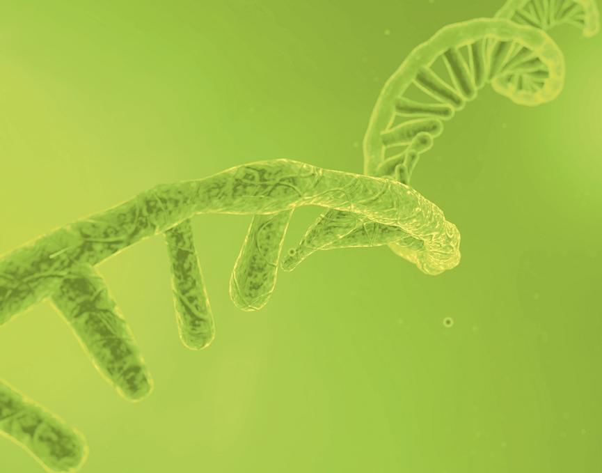 Informationen zum Coronavirus - COVID-19