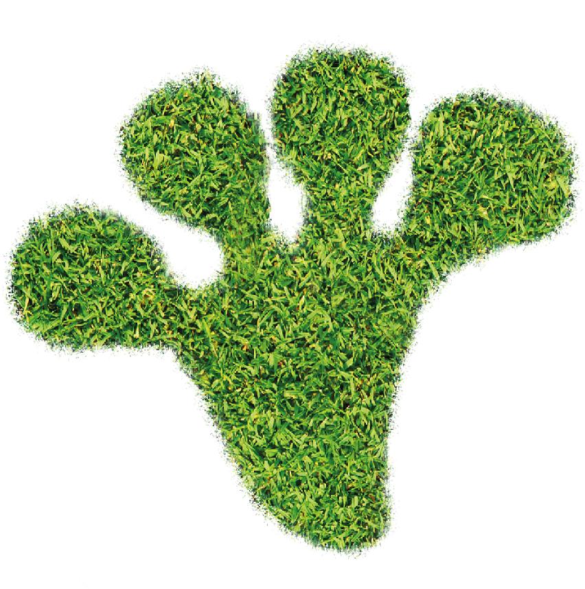 Medien auf 100% pflanzlicher Basis - neoFroxx bietet tierfreie Alternativen