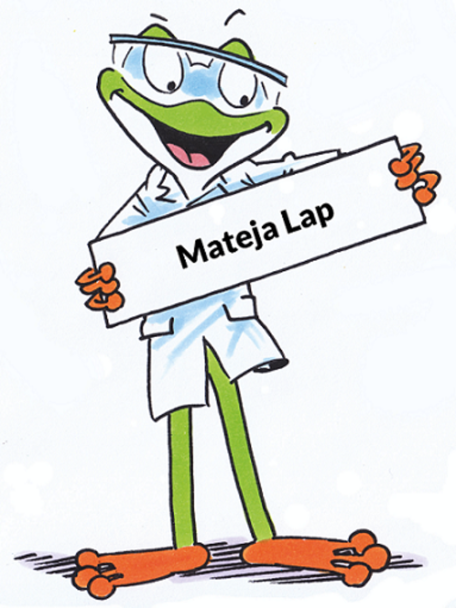 Mateja Lap