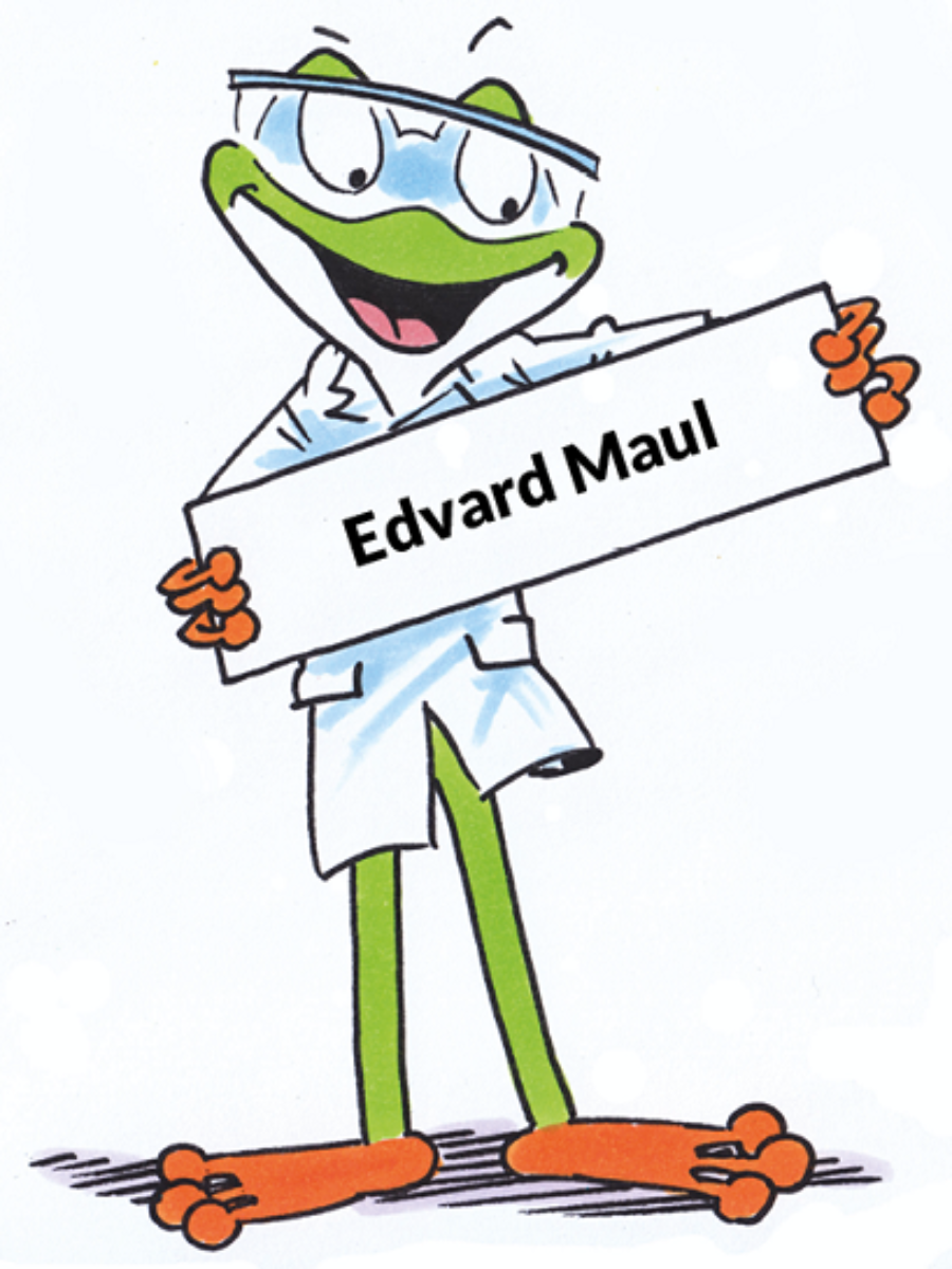 Edvard Maul, neoFroxx Mitarbeiter im Bereich Vertrieb